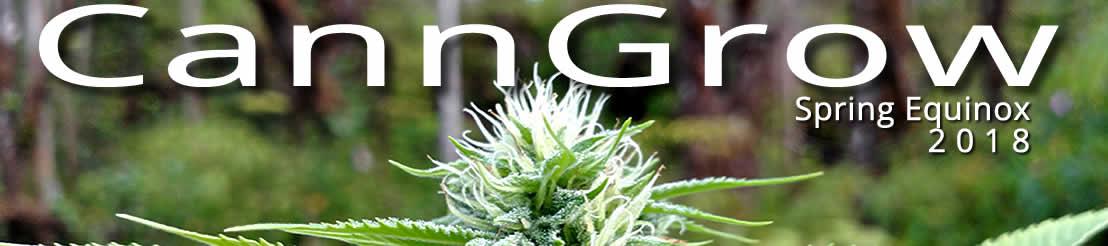 Hawaii Cannabis CannGrow Spring Equinox Event