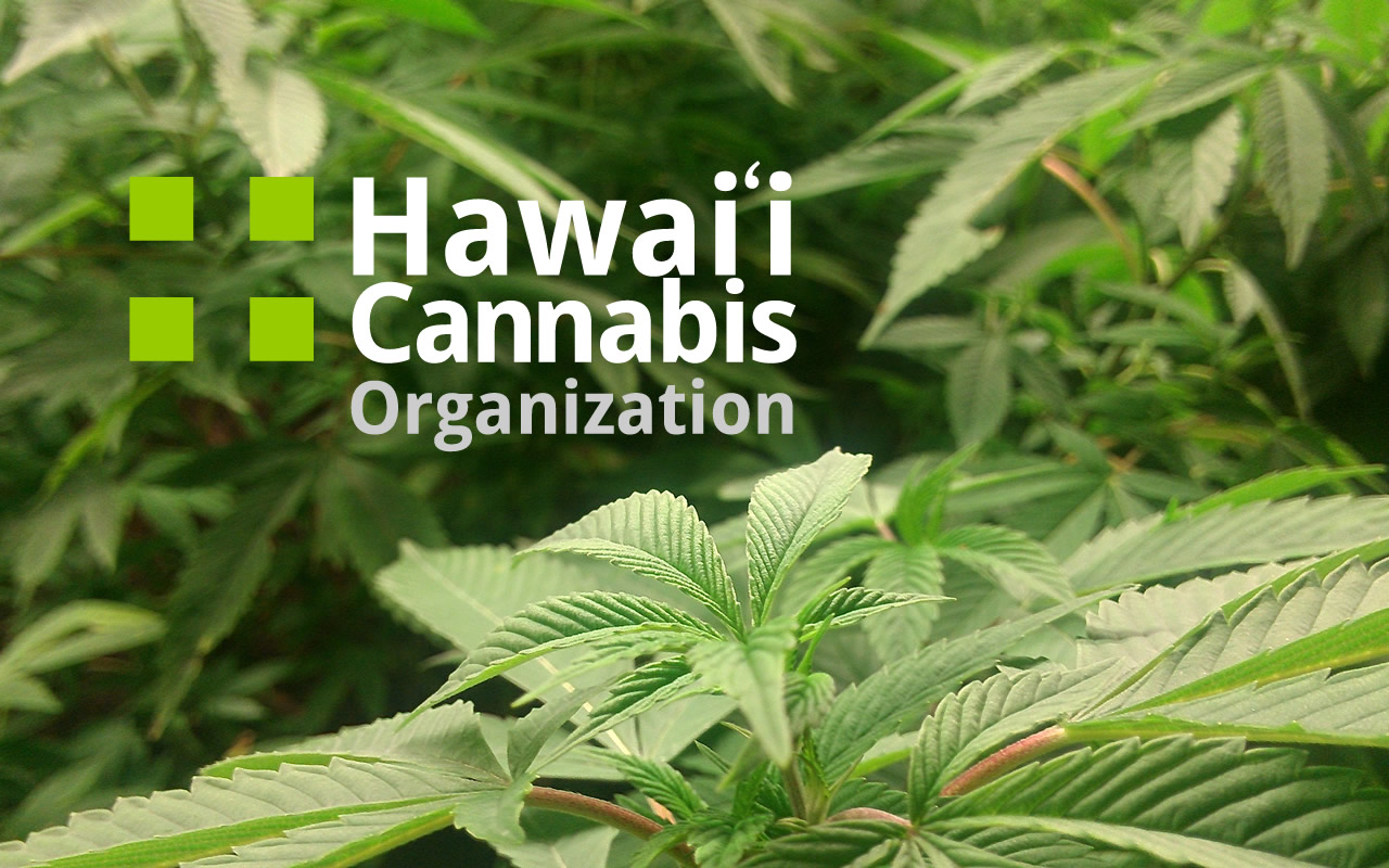 Hawaii Cannabis