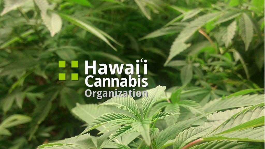 Hawaii Cannabis Organization